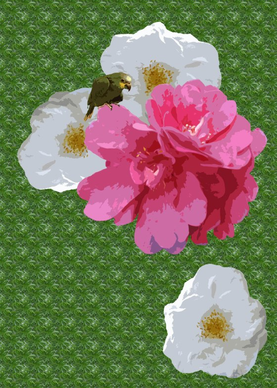 lolitaflowercard