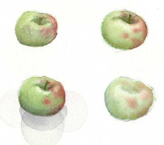 Apple Study