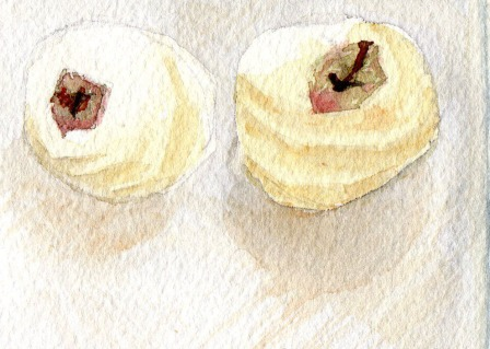 Peeled Apples Study